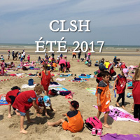 Couverture Gallery Clsh2017